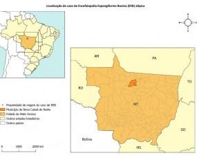 MAPA divulga nota técnica sobre ocorrência de encefalopatia espongiforme bovina atípica no Brasil